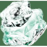 Lady-Emblem-Leau